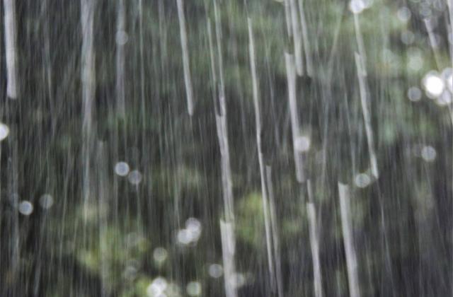 ゲリラ豪雨などの雨音軽減をしたい